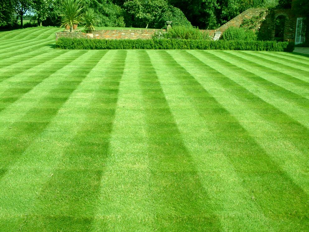 Quality Lawn