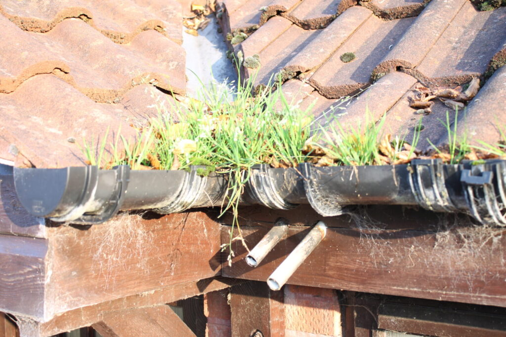 image of a blocked gutter
